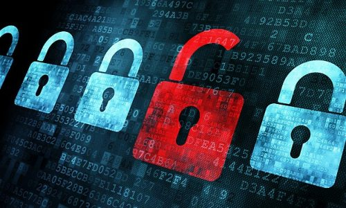 Why Checking Data Security Matters for Your Business in Chicago