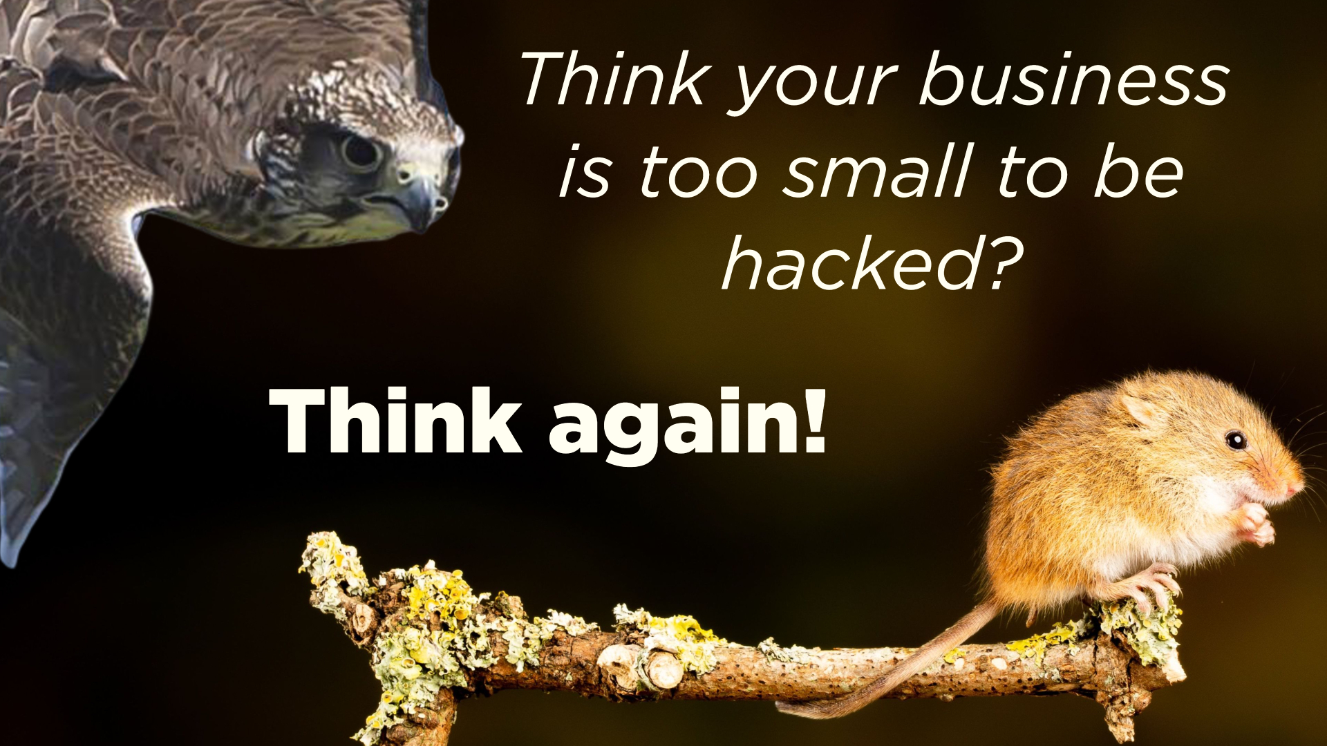 Think your business is too small to be hacked? Think again!