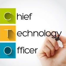 virtual cto cio