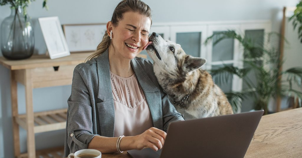 Remote worker on her laptop while dog licks her face